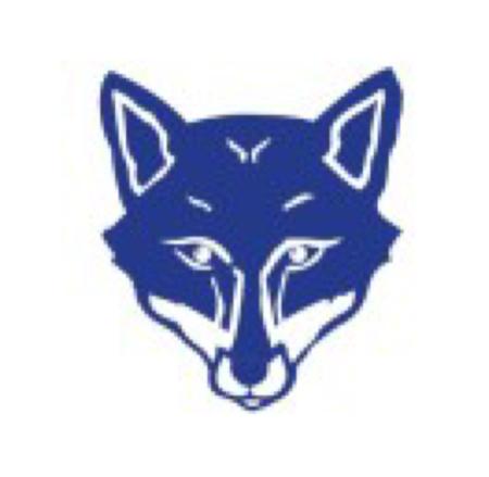 蓝狐笔记 - 独家号