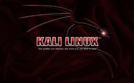 Kali 渗透 安全 - 独家号