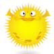 figotan - 开发者头条